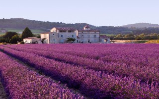 Hotels Provence